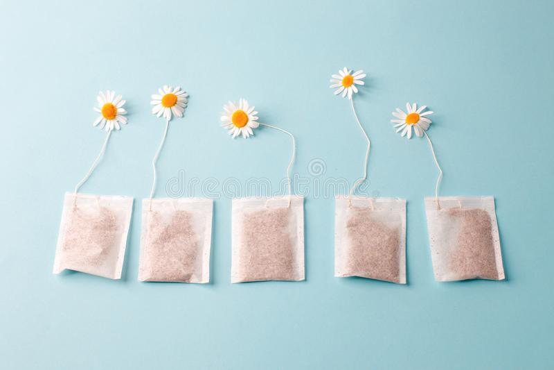 Kräuteralternativmedizin-Reihe: Kamillenblumen und -teebeutel auf blauem Hintergrund Saisonantikrise, Magen und Kälten lizenzfreies stockfoto