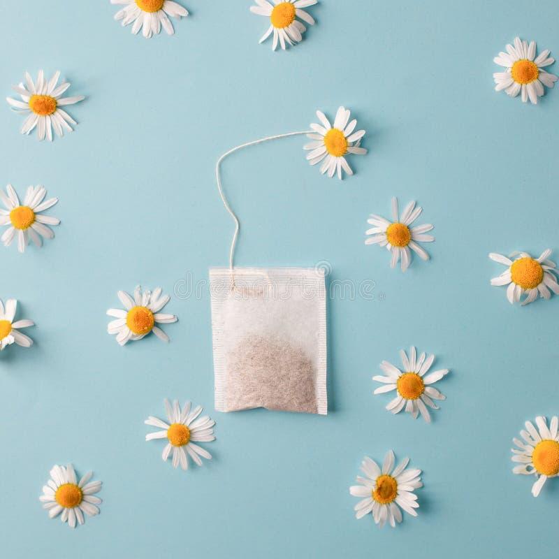 Kräuteralternativmedizin-Reihe: Kamillenblumen und -teebeutel auf blauem Hintergrund Saisonantikrise, Magen und Kälten lizenzfreie stockfotos