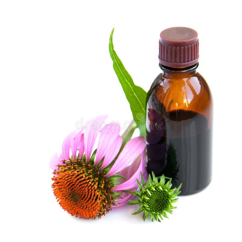 Kräutermedizin stockbild