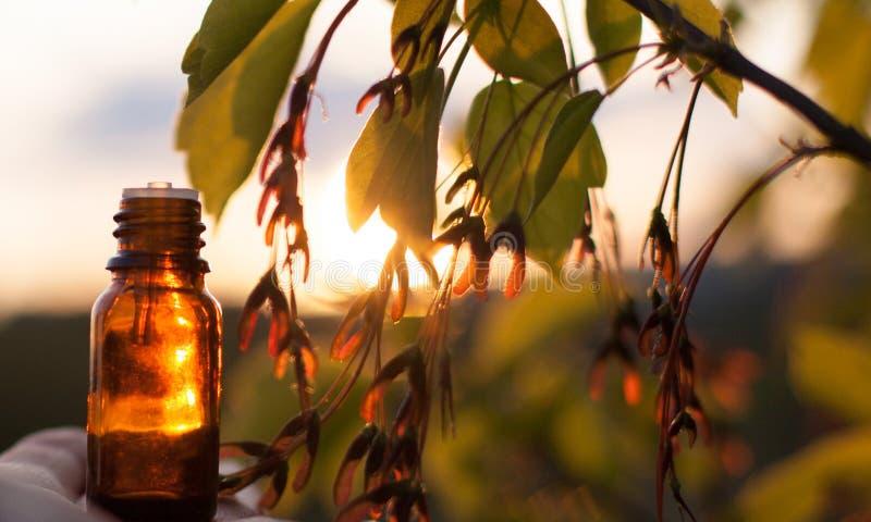 Kräutermedizin oder Aromatherapie - Flasche stockfotos