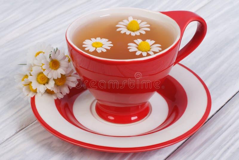 Kräutertee mit Kamillenblumen lizenzfreie stockbilder