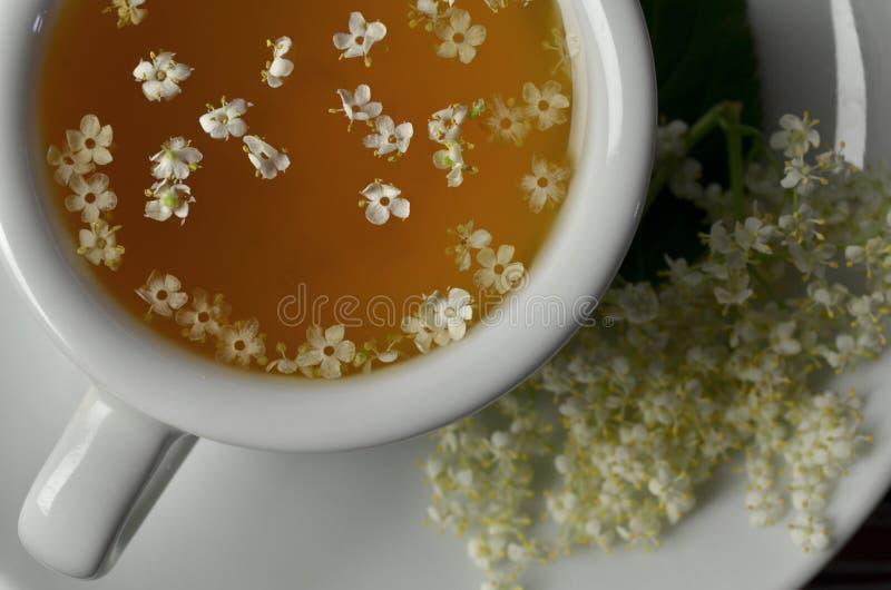 Kräutertinktur von der älteren Blume lizenzfreie stockbilder