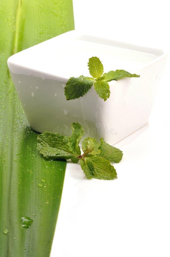 Kräuterwasser lizenzfreies stockfoto