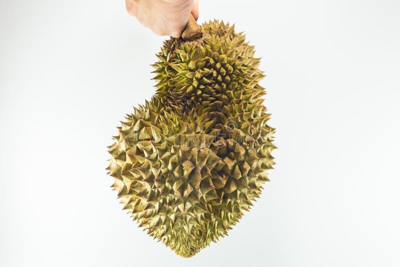 Królewiątko owoc, durian zdjęcia royalty free