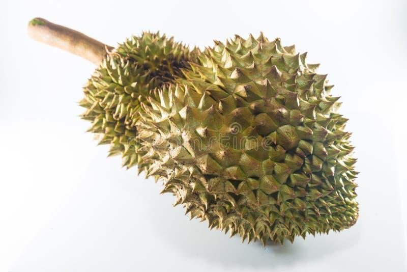 Królewiątko owoc, durian zdjęcie royalty free