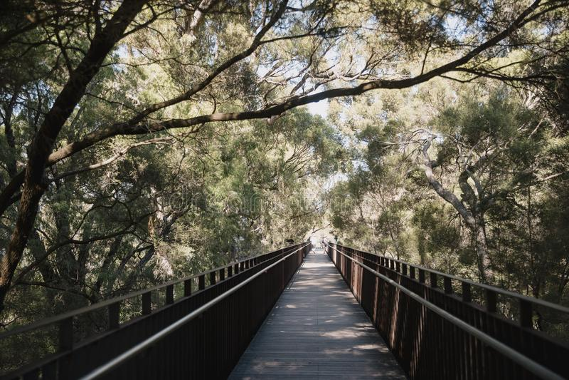 Królewiątko parka Podwyższony przejście obraz royalty free