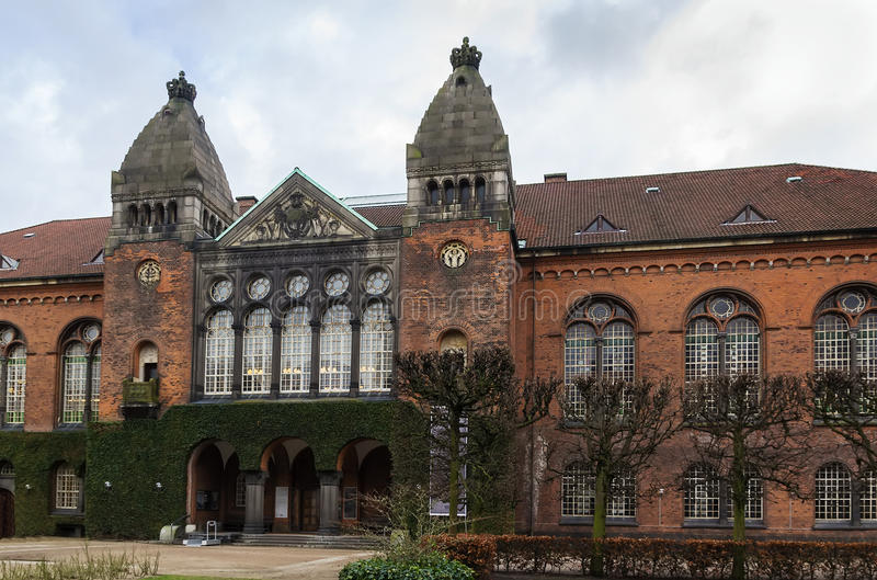 Królewska biblioteka, Kopenhaga obrazy royalty free