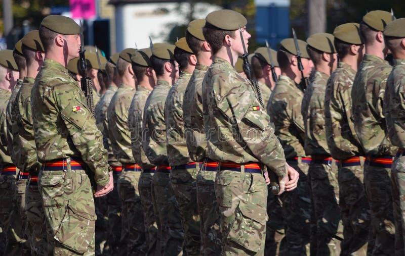 Królewski Anglian pułk na paradzie zdjęcia stock