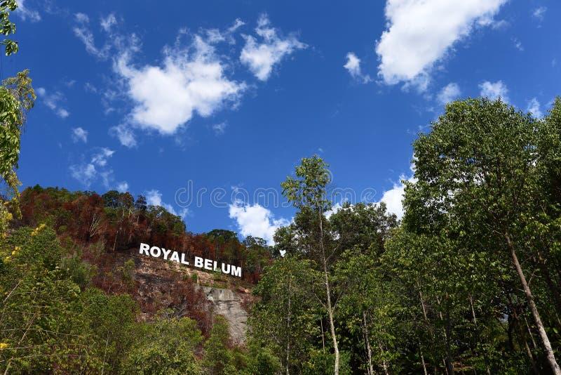 Królewski Belum zdjęcia royalty free