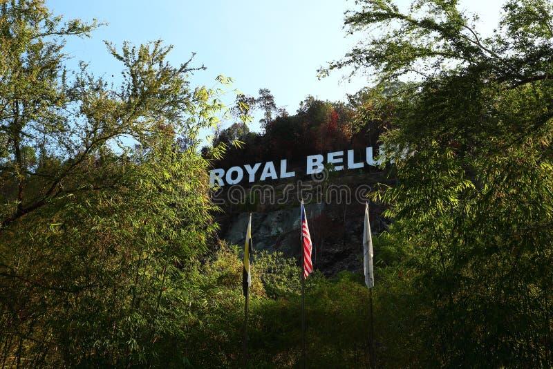 Królewski Belum obrazy royalty free