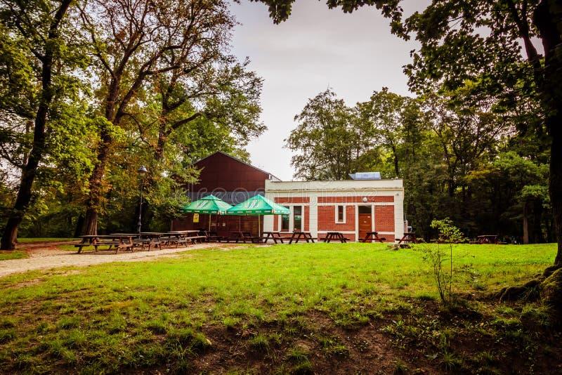 Królewski Parkowy Stromovka Krà ¡ lovskà ¡ Obora Stromovka w Praga, republika czech obrazy royalty free