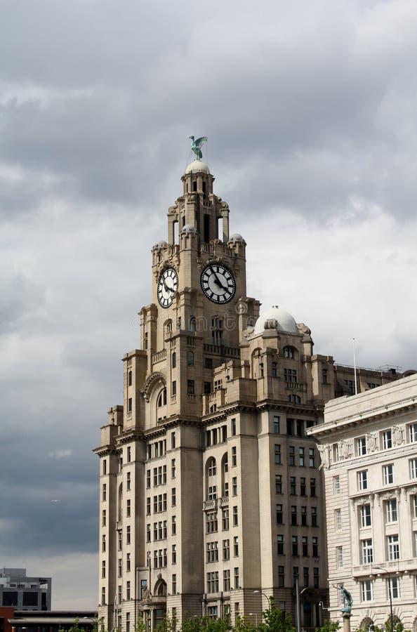 Królewski Wątrobowy budynek, Liverpool zdjęcie stock