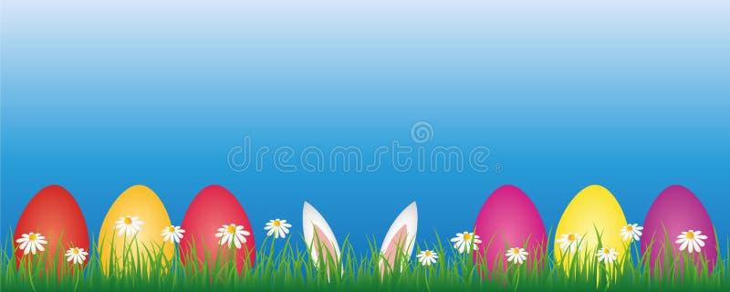 Królików ucho i kolorowi Easter jajka w zielonej łące z białą stokrotką kwitną sztandar z kopii przestrzenią royalty ilustracja