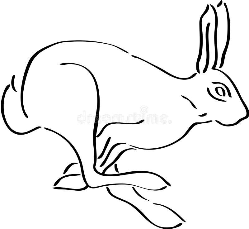 królik ilustracji