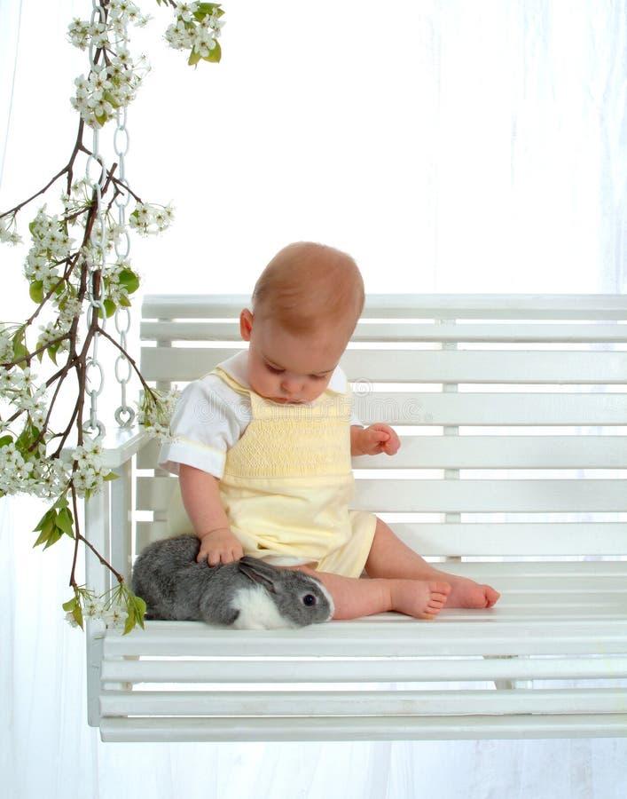 królik głaskać dziecko zdjęcia stock