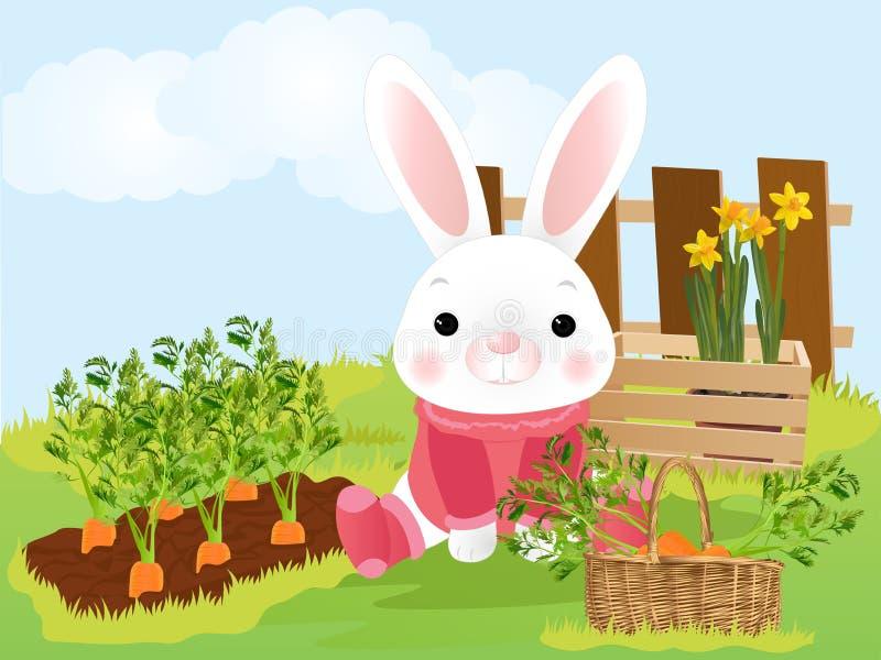 Królik przy gospodarstwem rolnym z marchewkami royalty ilustracja