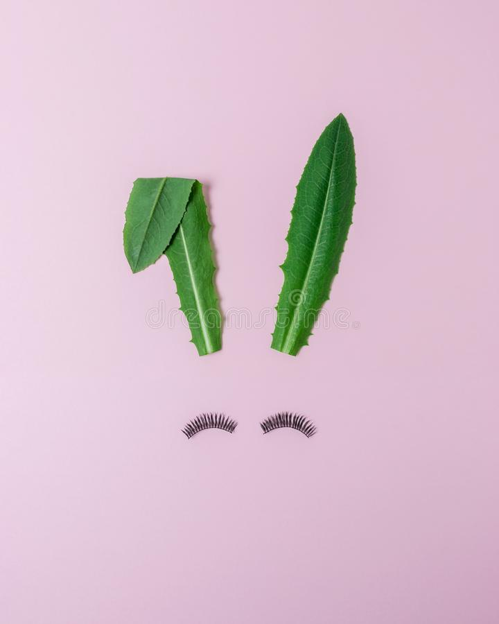Królik twarz robić naturalna zieleń opuszcza z rzęsami na pastelowych menchii tle Wielkanocny minimalny pojęcie Mieszkanie nieatu fotografia stock