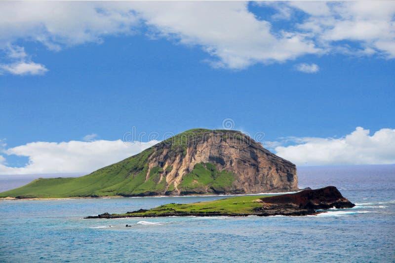 Królik wyspa, Makapu'u punkt obserwacyjny, Oahu, Hawaje obrazy stock