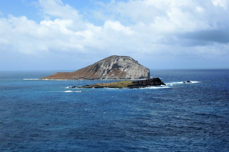 Królik wyspa przy Oahu Hawaje usa obraz stock