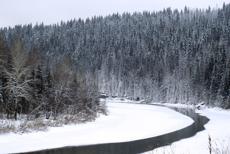 Krökningen av en vinterflod som flödar mellan skogsbevuxna kullar som täckas med snö royaltyfri fotografi