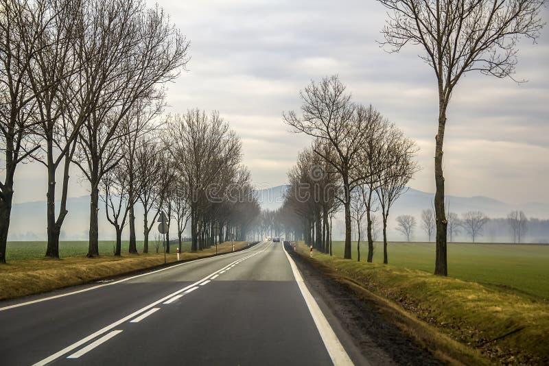 Krökt för landsväg för två gränd spolning till och med träd arkivbilder
