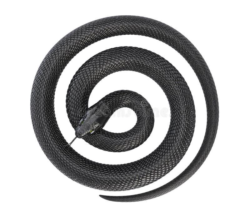 Kręcony Czarny wąż ilustracja wektor