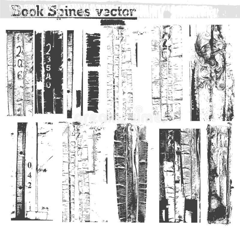 kręgosłupa książkowy wektor ilustracja wektor