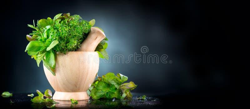 kr?uter Bündel des frischen grünen organischen aromatischen Krauts verlässt im hölzernen Mörser mit Stampfe über schwarzem Hinter lizenzfreies stockfoto