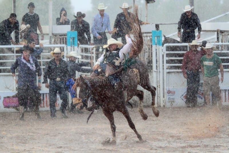 Krańcowy Rodeo obrazy royalty free