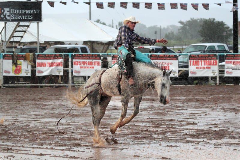Krańcowy Rodeo zdjęcie stock