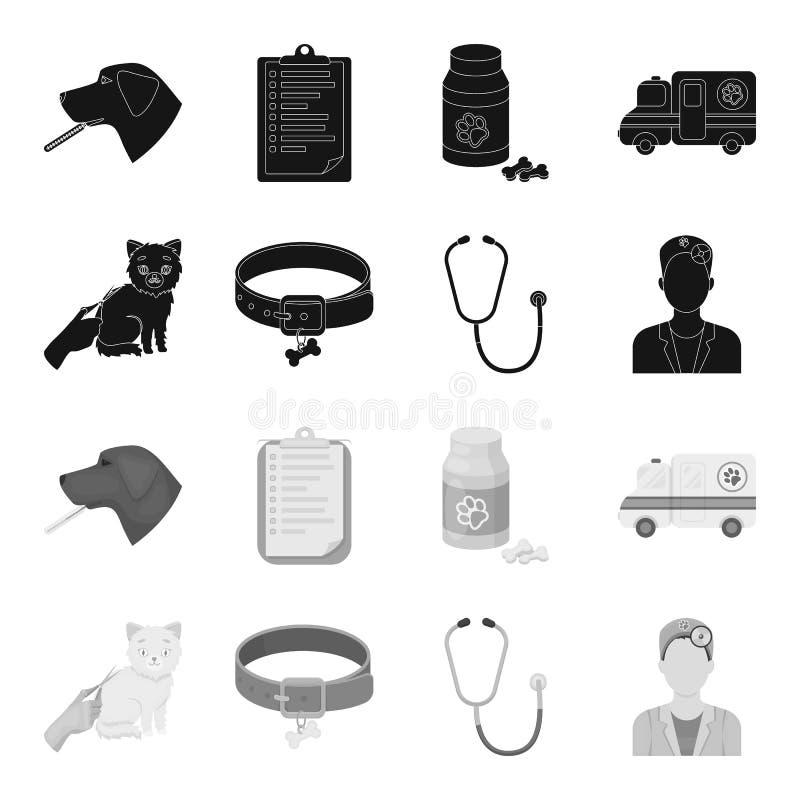 Kraag, been, kat, kapsel r vector illustratie