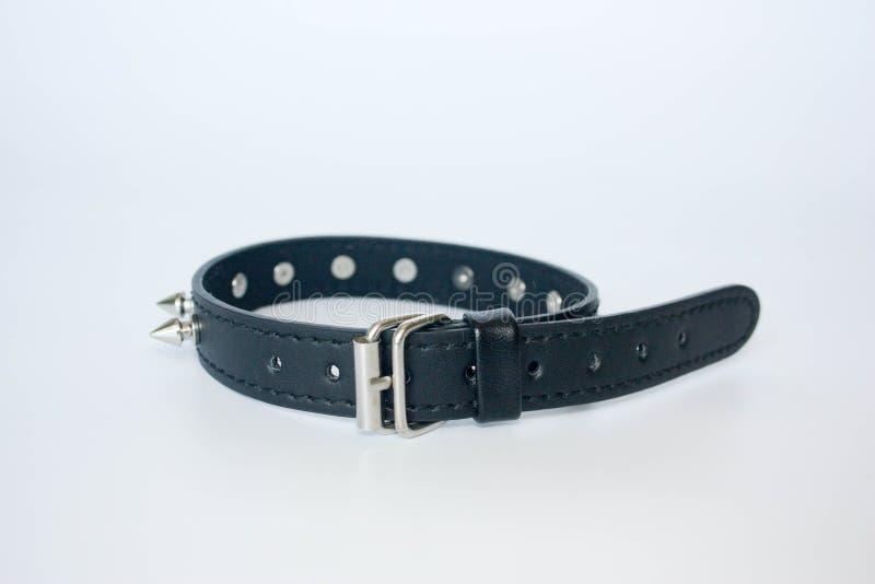 kraag met stekels zwarte met stekels royalty-vrije stock afbeelding