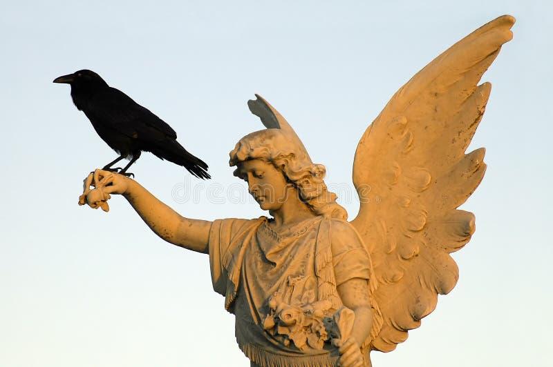 Kraai en engel stock afbeeldingen