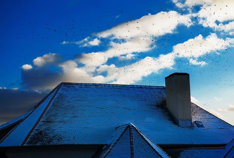 Kraaien die boven dak vliegen royalty-vrije stock afbeelding