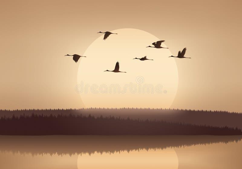 Kraan die bij zonsondergang vliegen royalty-vrije illustratie