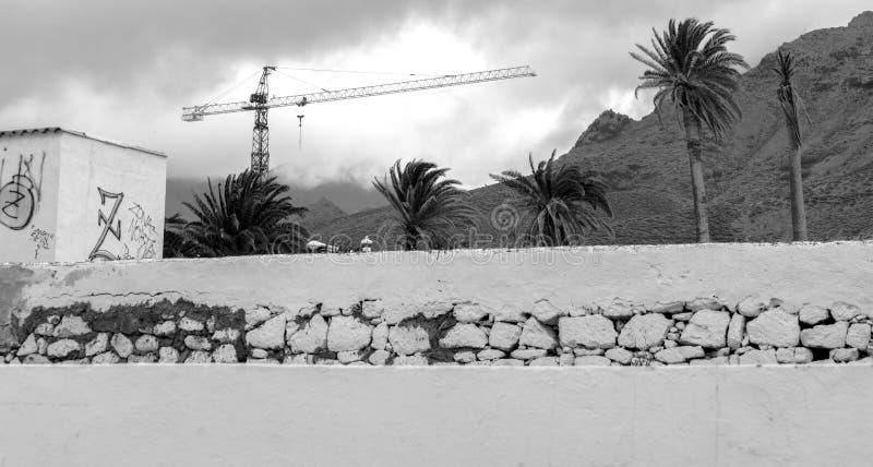Kraan, Muur en Palmen stock afbeelding