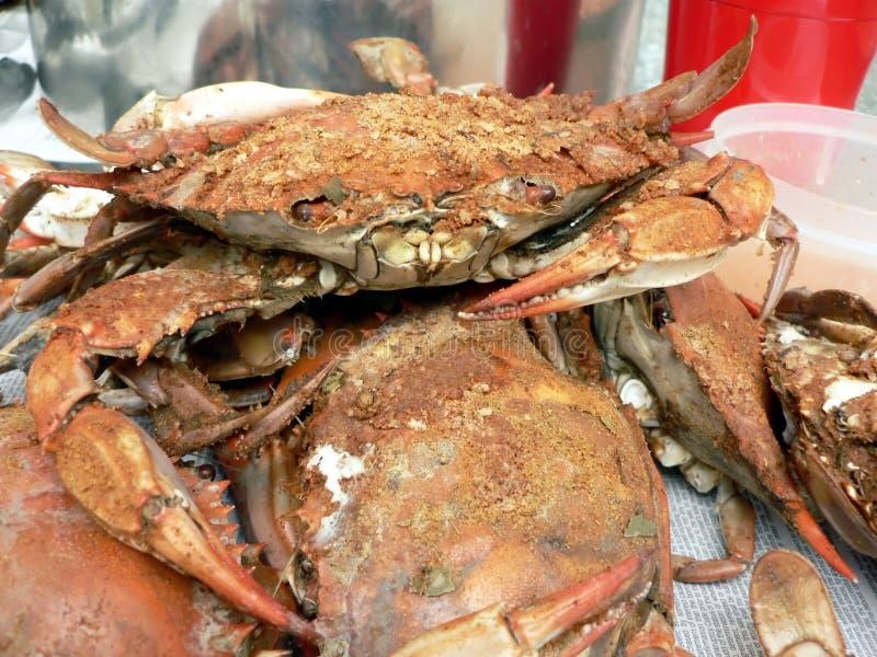 Krab - gekookte blauwe krabben stock fotografie