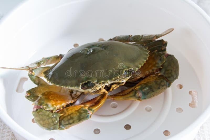 Krab op plaat royalty-vrije stock afbeelding
