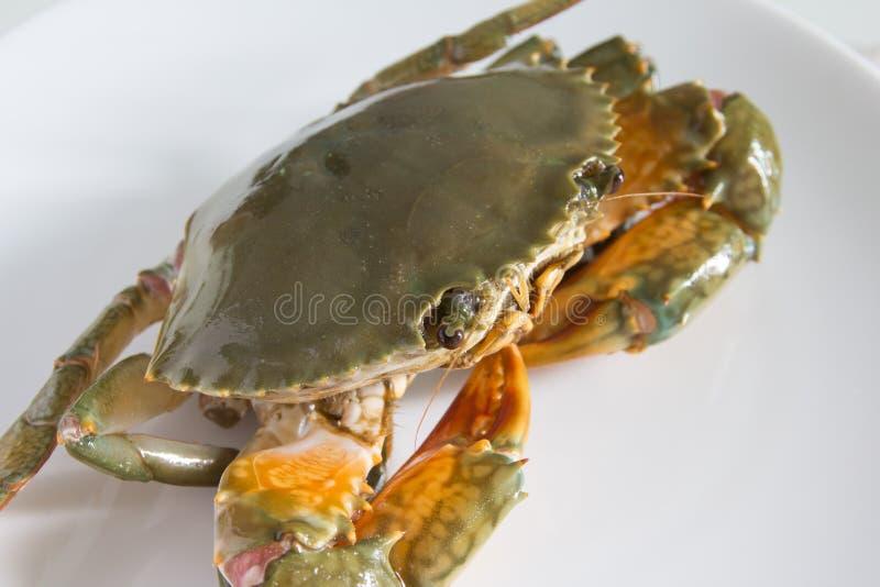 Krab op plaat royalty-vrije stock foto's
