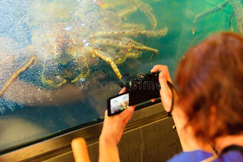 Krab wewnątrz w akwarium obraz royalty free