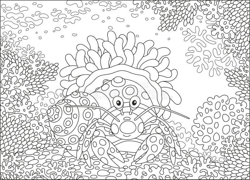 Download Krab z aktyny ilustracja wektor. Ilustracja złożonej z tropikalny - 106908173