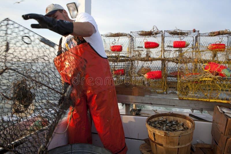 Kraba połów zdjęcie stock