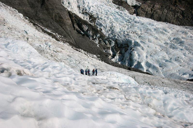 Krabb glaciäris på berglutning arkivbilder