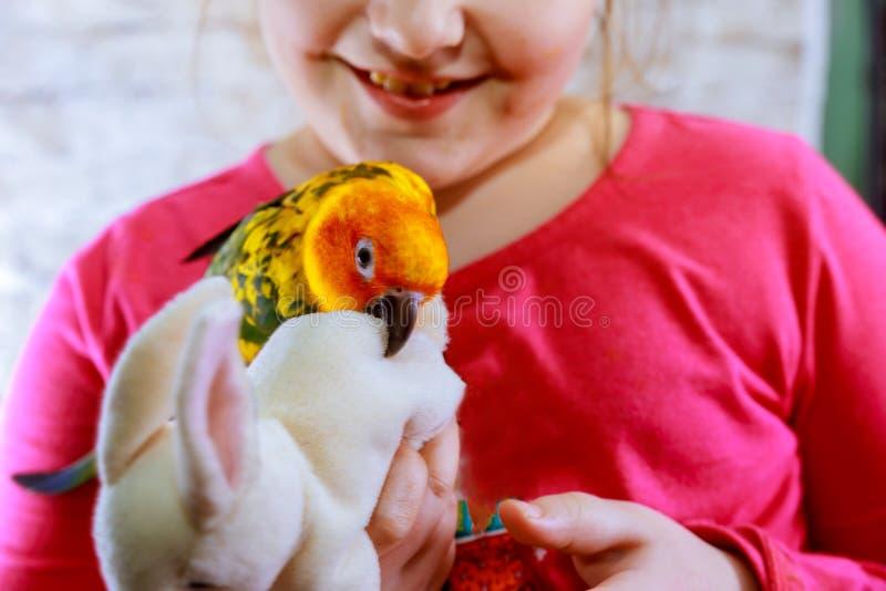 Krabb papegoja bredvid lite flicka Den gula gröna papegojan arkivfoto