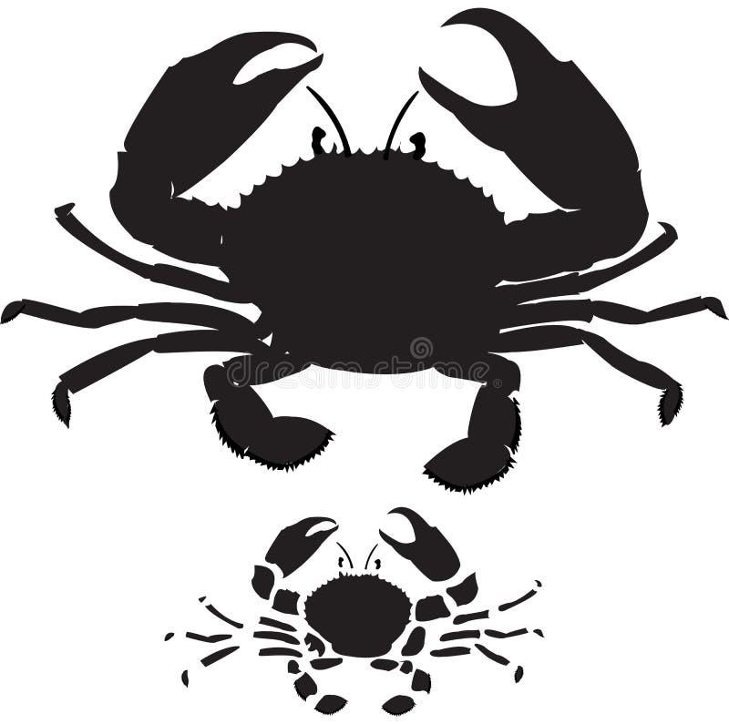 krabba vektor illustrationer