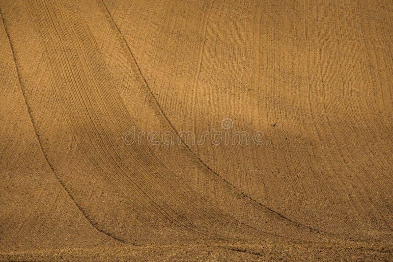 Krabba höstfält i Moravian Tuscany, Tjeckien royaltyfria bilder