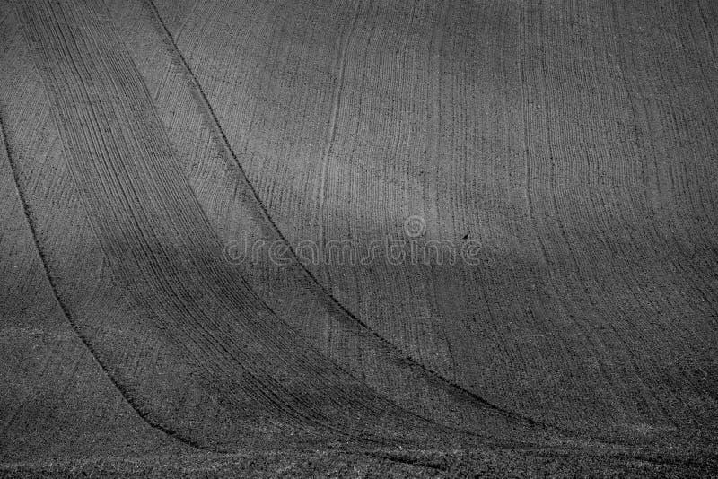 Krabba höstfält i Moravian Tuscany, Tjeckien arkivbilder