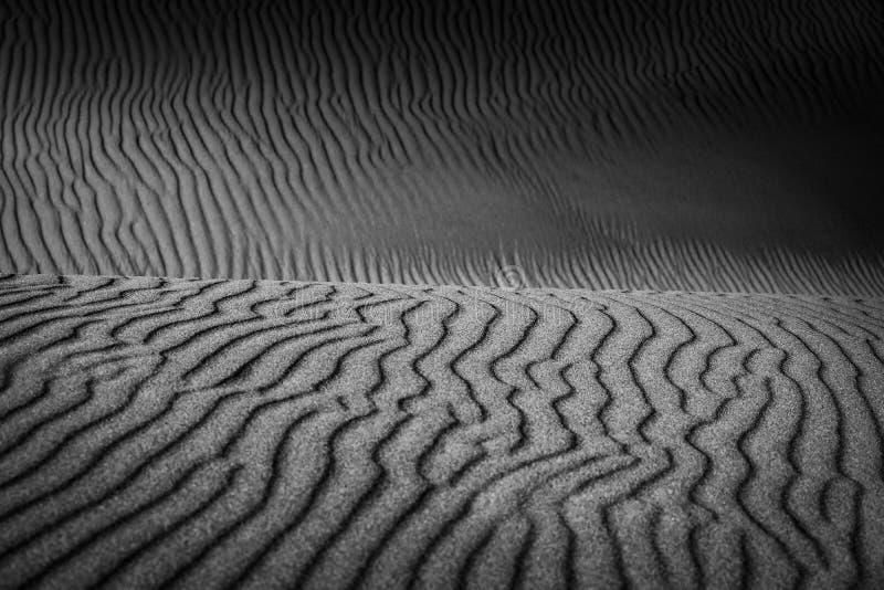 Krabba linjer i sanden i svartvitt arkivfoto