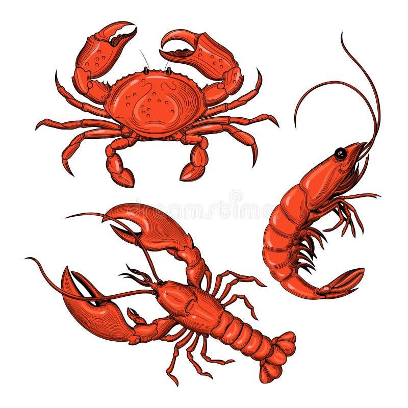 Krabba räka, hummer Skaldjur stock illustrationer
