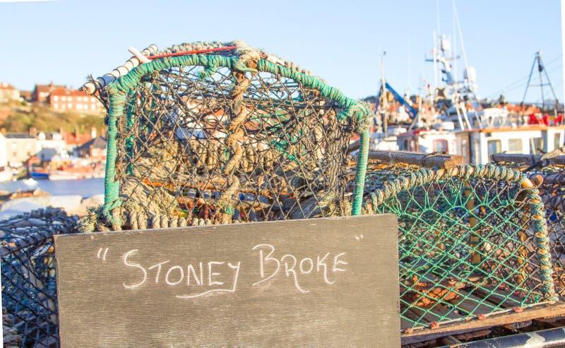 Krabbakrukor med stoney bröt tecknet framme av hamnen royaltyfri bild